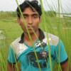 Gopal Saha profile image