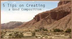 5 Tips on Creating a Good Composition