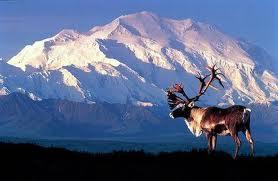 Mt. McKinley, Alaska, USA.