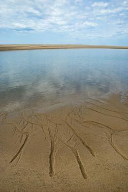 Receding Tide from Scott Puls flickr.com