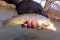 Tips for Fishing Mossy Creek