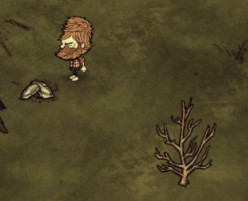 Don't Starve: Survival Guide