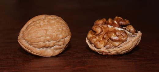 A shelled and unshelled walnut, side by side. Notice how they look like the human brain, both when shelled and unshelled.