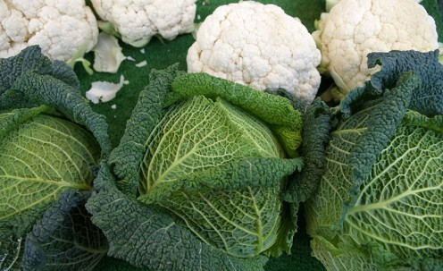Another type of savoy cabbage growing along side heads of cauliflower. I hope you try these different types of cabbage and enjoy growing them and also using them in the many kinds of dishes that use cabbage. I hope you have fun growing the cabbage.