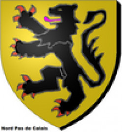 Historic arms of Flanders used by the Nord-Pas de Calais region