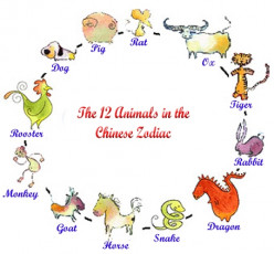 The 12 Chinese Animal Signs