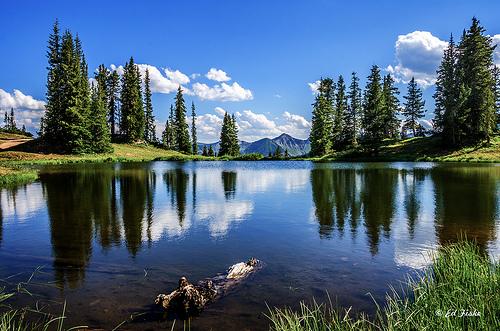 Paradise Lake from efiske flickr.com