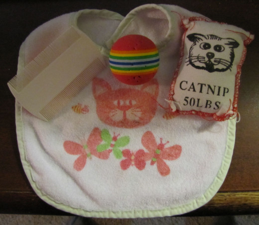 "Typical child toys and grooming items from a past ""Cat Lady"""
