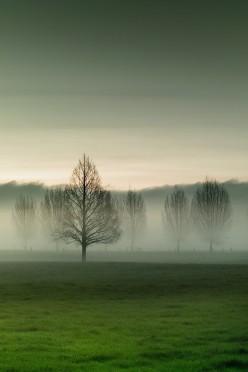 Mist:  A Poem