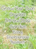 How to Grow an Organic Straw Bale Garden Easily