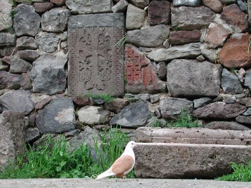 A Peace Dove near Sochi.