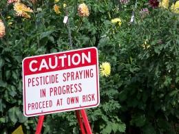 Pesticide spraying in progress
