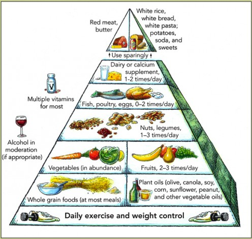 Harvard's food pyramid