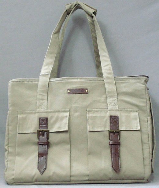 From the front, the Safari Carrier looks like an everyday tote.