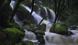 Cataract Creek, CA