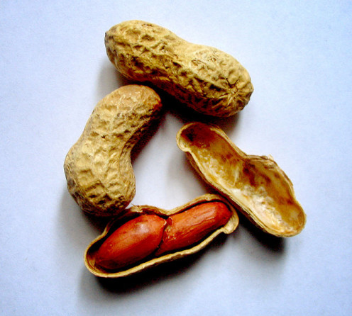 Peanuts can be eaten raw straight from the shell or roasted and salted.