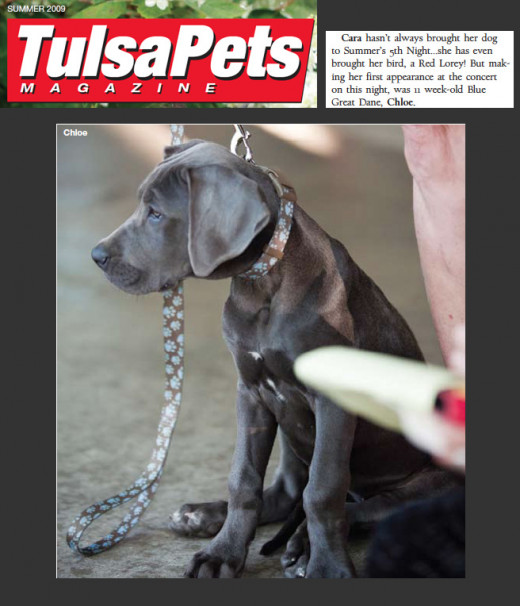 Chloe Nicole At 5th Night On The Square was caught on camera for Tulsa Pets Magazine.
