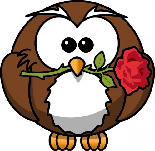 Owl Animal Bird Event Flower Funny Gift Rose