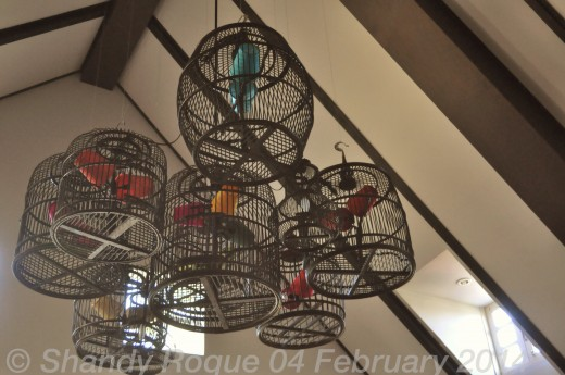 Bird cages on the fitness room ceiling.