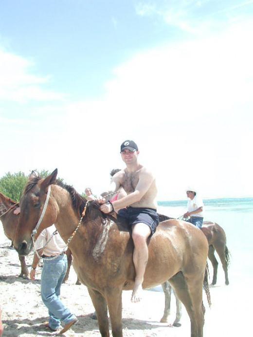 Beautiful horses on Beach