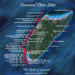 Cozumel, Mexico is a protected marine park. Over 2,500, 000 visit the island every year. Scuba diving on the beautiful reefs is a popular attraction.
