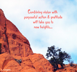Combining vision with purposeful action & gratitude will take you to new heights...