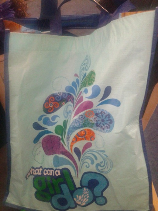 A reusable Girl Scout cookie bag, which I carry my Brownie leader supplies in.
