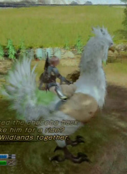Lightning Returns Final Fantasy XIII the Wildlands Main Quest Walkthrough
