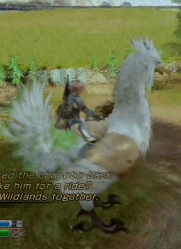 The first part of the Wildlands main quest walkthrough involves trying to find the Angel of Valhalla and then trying to heal an angel (the white chocobo)