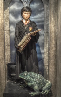Wax statue of Harry Potter in Malahide, Ireland.
