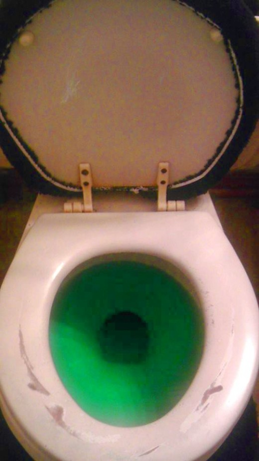 Here we see the use of green food coloring to avoid that awkward confrontation of urine in the bowl.
