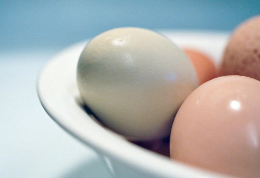 You'll need eggs in order to blow them. You can use any kind of egg from chicken to duck/goose to ostrich, if you like!