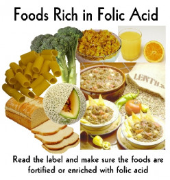 Folic Acid (Pteroyliglutamic Acid): Nutritive Significance, Clinical Manifestations Of Deficiency And Treatment
