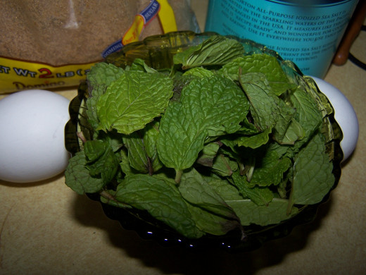 Mint with stems and blemished areas removed.