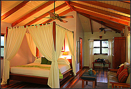 Inside our Hamanasi treehouse