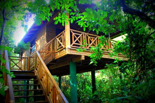 Hamanasi treehouse