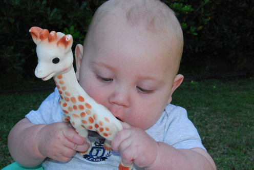 Baby playing with Sophie the giraffe