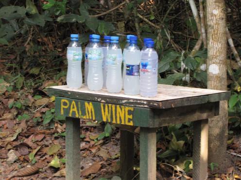 Bottles of palm wine