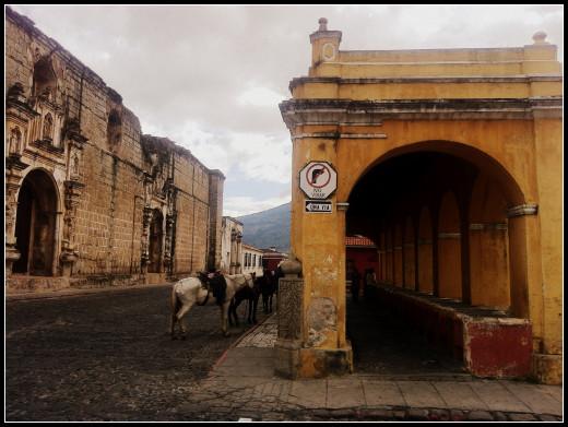 Horse parking. Antigua
