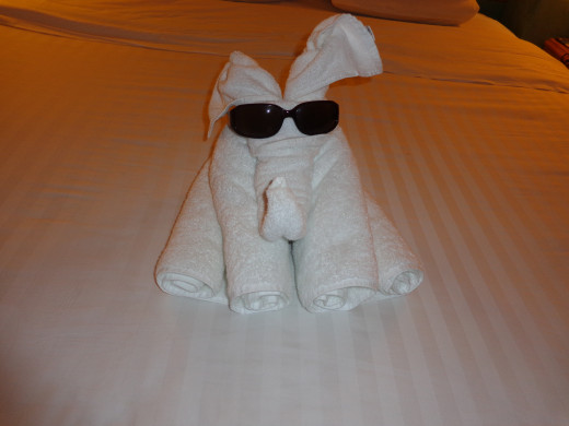 Nightly Towel Animals Are Left in Your Room