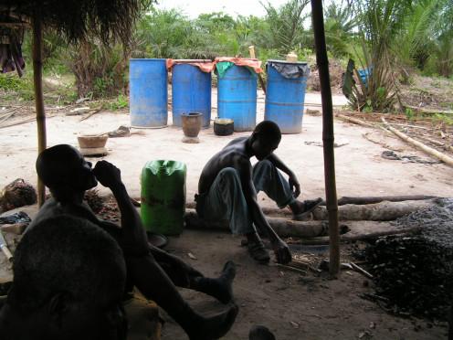 Brewing palm wine in still drums