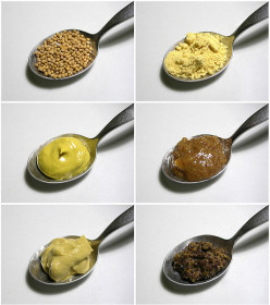 Homemade Mustard Recipes - Dijon, Beer, Honey and Herb Varieties