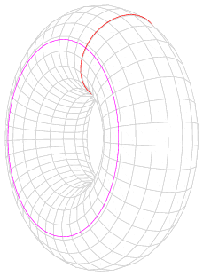 Ellipse in torus space.