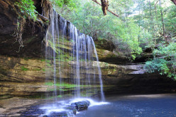 Most Popular Tourist Destinations of Alabama
