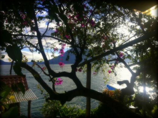 Having coffee lakeside in Santa Cruz.