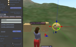 Raw prims cube, cylinder, and circle.  Circle in move mode.