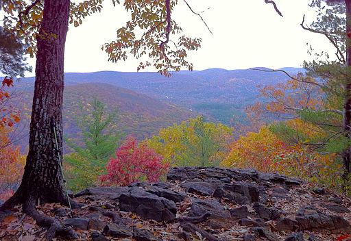 A spot on the Appalachian Trail near Cornwall, CT.