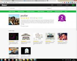 Profile page on Fiverr showing bio, gigs and levels.