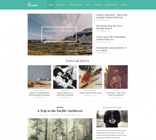 $45 - WordPress Theme For Magazine Website