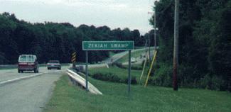 Scene near Zachiah Swamp area in 2001